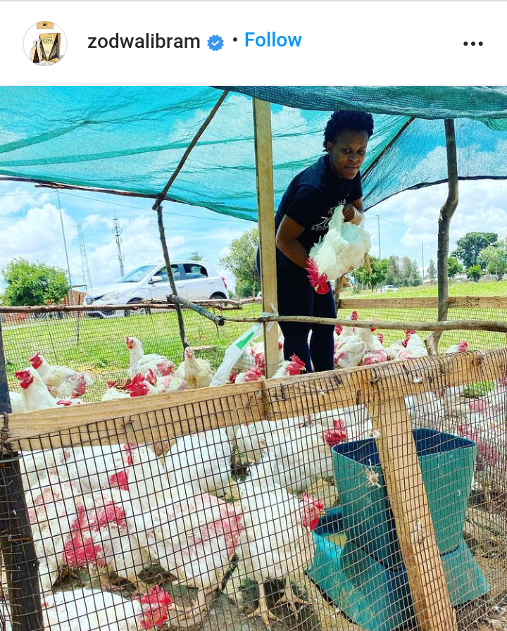Zodwa Wabantu Ventures Into Chicken Business